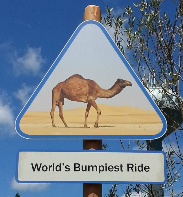 Camel Warning