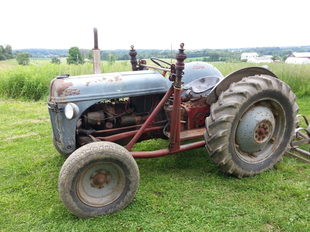 Old Tractor - Ford 8N