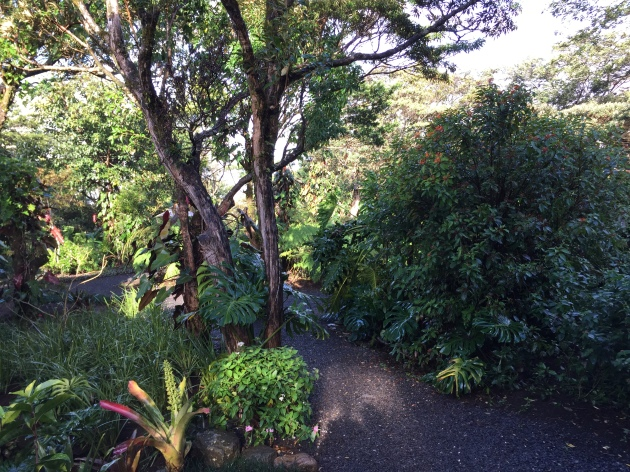 Garden path at Monteverde Lodge and Gardens