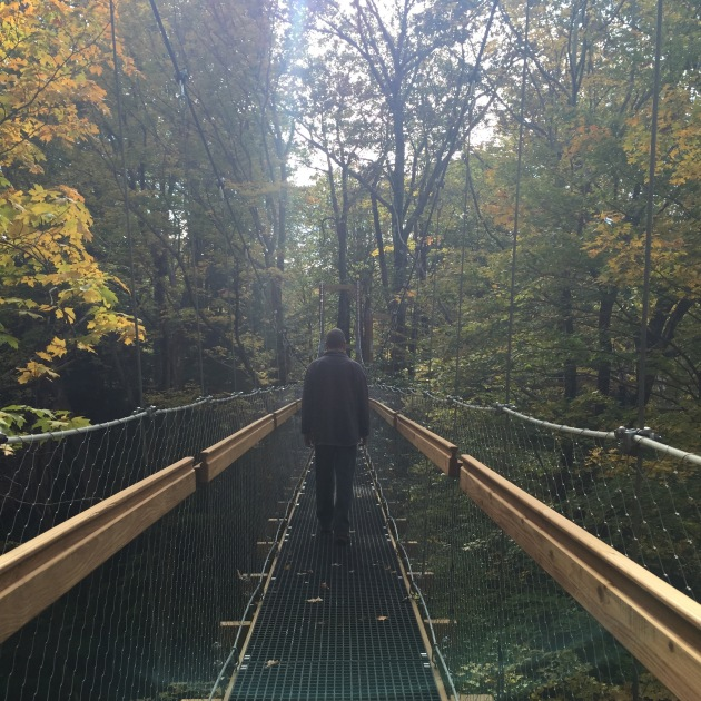 Murch Canopy Walk at Holden Arboretum